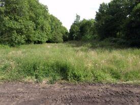 Field for rent in Llwydcoed Aberdare