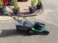 Hayter petrol push lawnmower