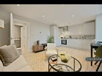 1 bedroom flat in Buckingham Place, High Wycombe, HP13 (1 bed) (#1135799)