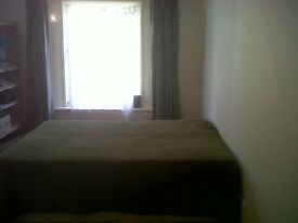 Double room in spacious garden flat in Crystal Palace.