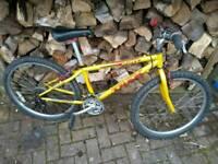 Trek 24 inch kids bike