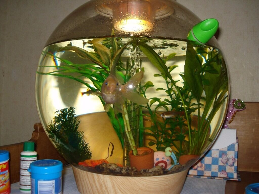 30 litre Biorb tank with light, pump and 5 Reef One service kits