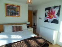 Modern and Bright 2Bed Pent House to rent!!! Bow, Stratford, Pudding Mill Lane DLR E15