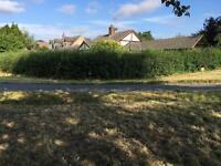 Clear gardens