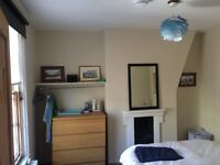 Double room in large friendly house in Kemptown - £550/Month