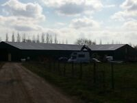 Agricultural and Industrial Roofing repairs steel kit buildings tin roof sheets Norfolk Cambridge