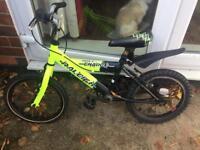 Raleigh Kids Bike