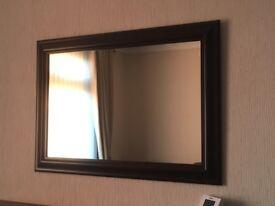 29 x 19 inch mirror