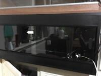 Black vivarium 3ft