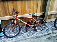 A child's universal bike
