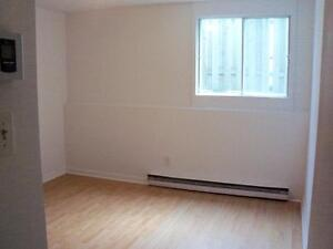 DECEMBER - 13TH MONTH FREE -  1-BEDROOM DOWNTOWN GATINEAU
