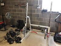 Gym equipment. Weights. Bench. Bar. Squat Rack.