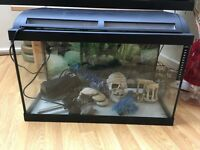 Marina 60x30 Fish Tank with Ornaments
