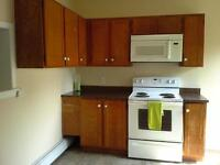 Huge 4 bdrm flat just off Spring Garden Road, 5 mins to DAL!