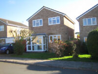 Room to let in private house in good location of Sherborne Dorset, friendly owner occupier