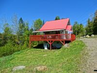 Maison - à vendre - Lac-Supérieur - 16418281