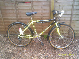 EMMELLE TOLEDO MOUNTAIN BIKE ONE OF MANY QUALITY BICYCLES FOR SALE