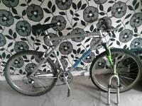 Gt pantera mountain bike