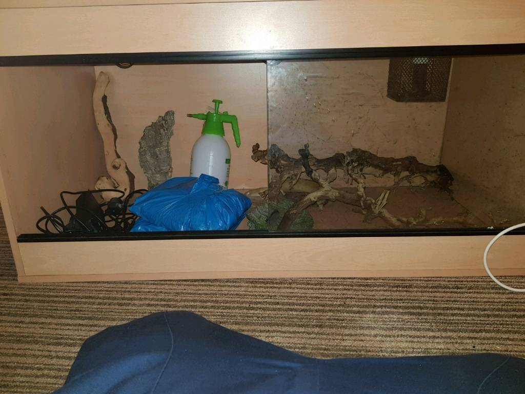 Reptile Viv