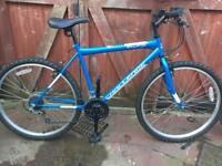 As new mans mountain bike. Can deliver