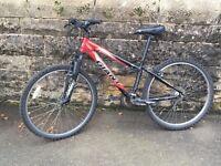 GIANT bike (black and red)