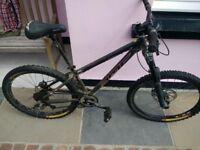 DMR Mountain Bike