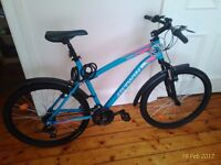 Bicycle BTWIN - Large size - Mountain bike with cable locks, lights and mudguards included.