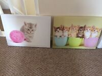 Cat and dog canvases