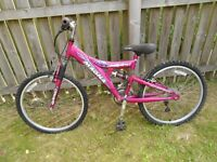 Girl's bike 20 inch wheel trim - Excellent condition, hardly used