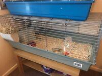 Indoor rabbit/guinea cage