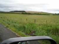 for sale land & semi detached house and land 4 acres&more to rent sunniside dl134lw