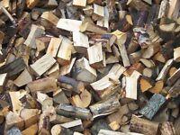 Seasoned Hardwood Logs