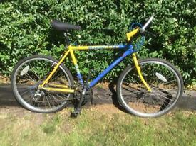 Ridgeback 601LX classic mountain bike
