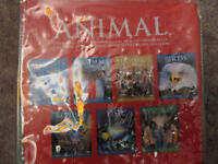 Pack of 7 Animal Guide Books by DK-large A4 size paperbacks- in plastic zipped case- £10
