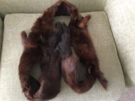 Antique / Vintage Fur Taxidermy Scarf / Stole