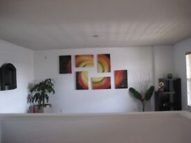 Gorgeous 6 piece wall painting