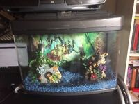 60 Litre Tropical Fish Tank with Pump Light Thermometer Gravel and tank furniture