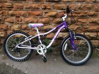 Specialized HotRocks Girls Bike 20 inch Light Weight Hard Tail
