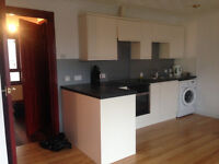 One Bed Flat available for immediate rent