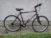 "Free spirit Kielder bike 26 inch wheels 21 gears 20"" frame with stand working order"