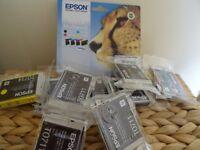 Epson 'cheetah' ink cartridges