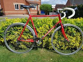 RALEIGH PURSUIT 12 SPEED RETO 80s CLASSIC RACER FIXIE OLD SCHOOL