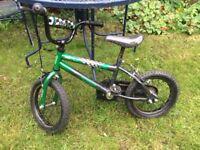Boys bike (16 inch wheels) (4-6 years)