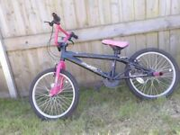 Girls and Boys BMX Bikes