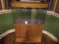 Used 270L Fish Tank, Glass, Stand, 2 Lights, 1 requires fixing in, Filter. Available to pick up