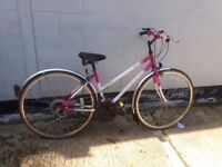 Womans hybrid mountain bike large ** i can deliver ** girls lady ladies