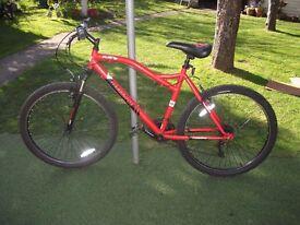 Men's Bike - Muddyfox Flare