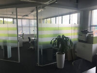 Large Glass Partition FREE TO COLLECTOR