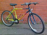 Falcom mountain bike - good brakes !