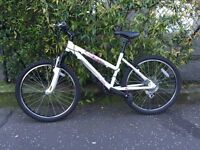 GT Palomar Mountain Bike + Beto Pump (Never used)